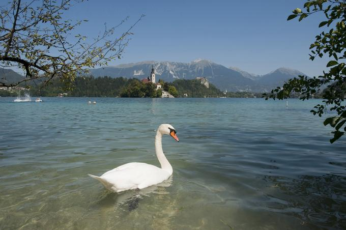 Of course, I would also visit Bled.