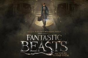 Magične živali (Fantastic Beasts and Where To Find Them)