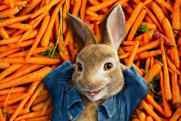 Peter Zajec (Peter Rabbit)