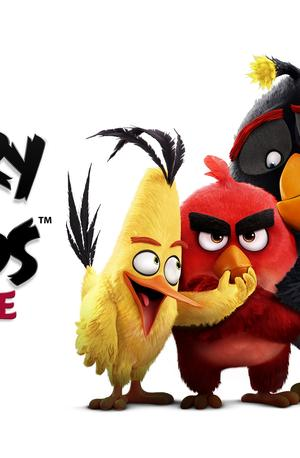 Angry Birds film (The Angry Birds Movie)