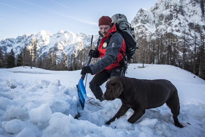 V veliko pomoč so gorskim reševalcem tudi reševalni psi.