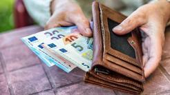 denarnica evri denar