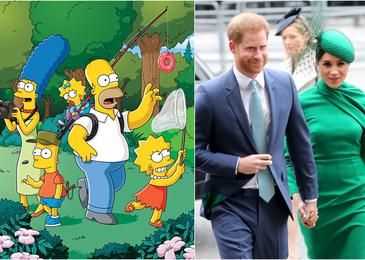 Princ Harry in Meghan v Simpsonovih? #video